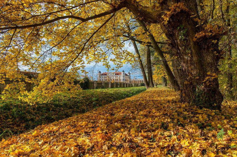 Чехия Южная Моравия осень пейзаж замок Осенняя моравскаяphoto preview