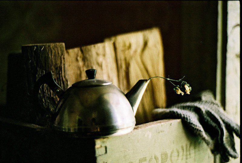 nikon, f80, film Цветочный чайphoto preview