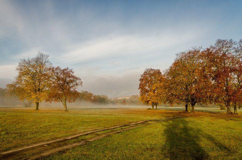 Туманное утро на Андреевском лугуphoto preview