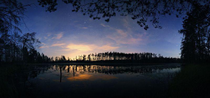 Ночь над лесным озеромphoto preview