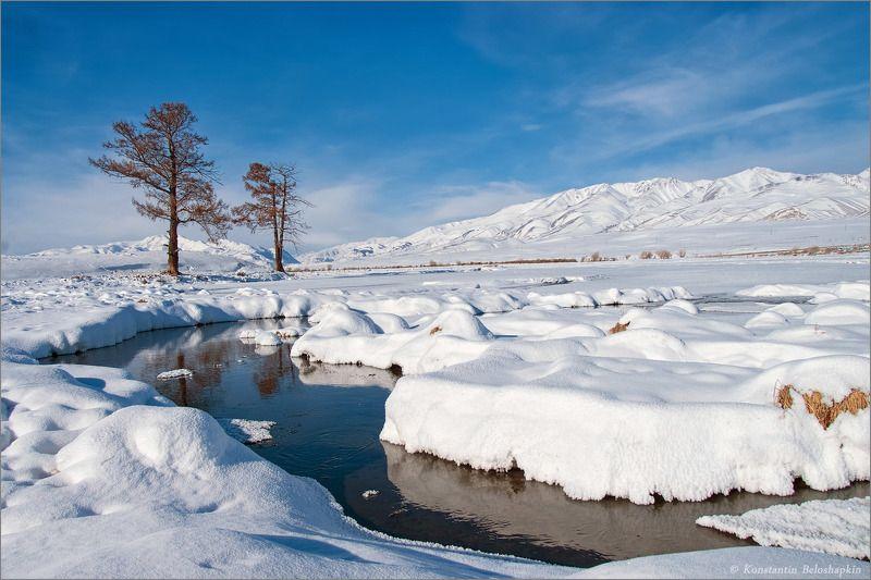 алтай, горы, курайский хребет, снег, чуйская степь, январь Зимний Алтайphoto preview