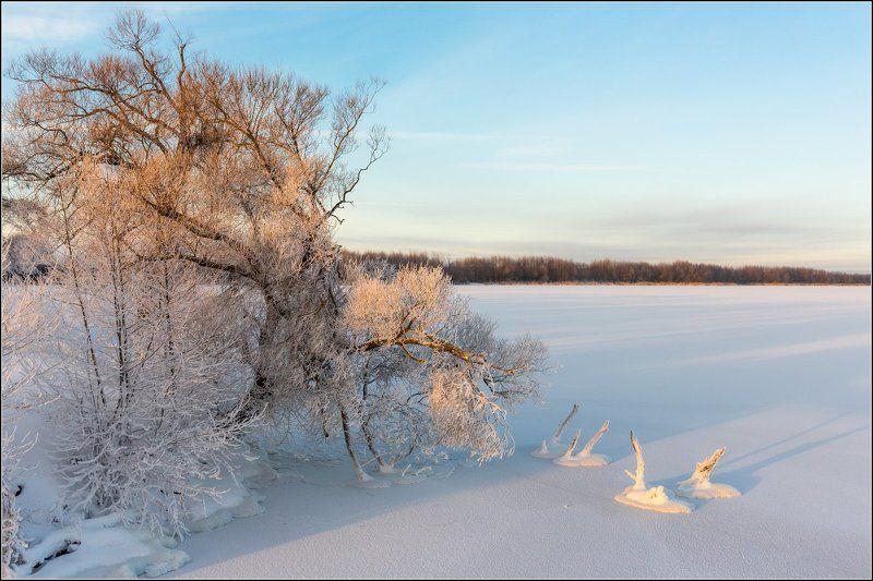 Россия, Московская обл, Шатура Про замерзших лебедейphoto preview