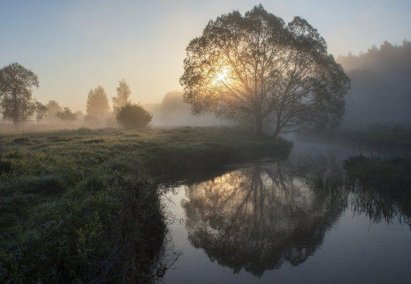Солнечное утро...photo preview
