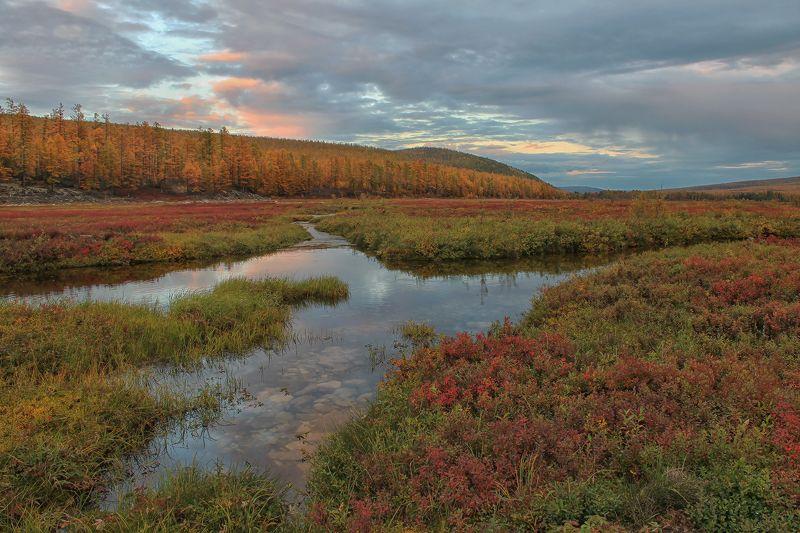 якутия, нерюнгри, осень, самокит, река_самокит В сентябреphoto preview