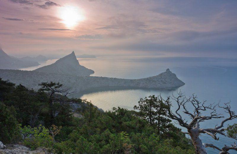 крым,новый свет Утро в Крымуphoto preview