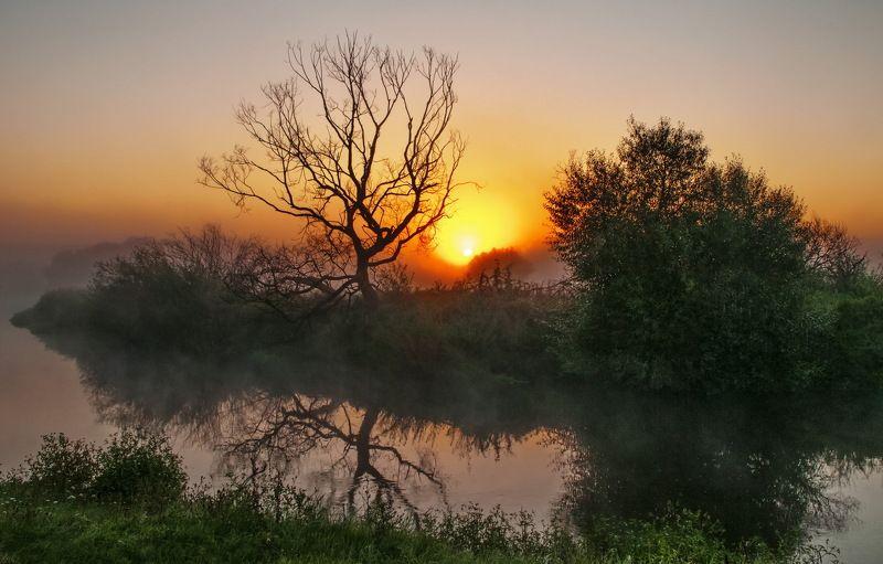 утро, туман, природа, речка Между ночью и днём...photo preview