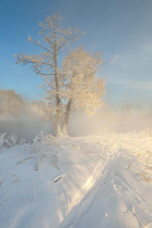 Морозные узоры.photo preview