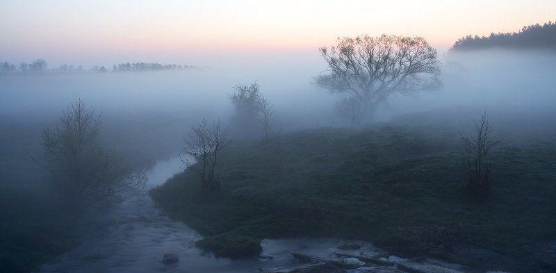 Утопая в тумане....photo preview