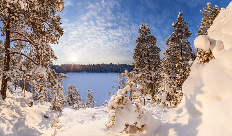 Ястребиное, Парнас, Ленинградская область, Ленобласть, зимний пейзаж, январь Нарядная зимаphoto preview