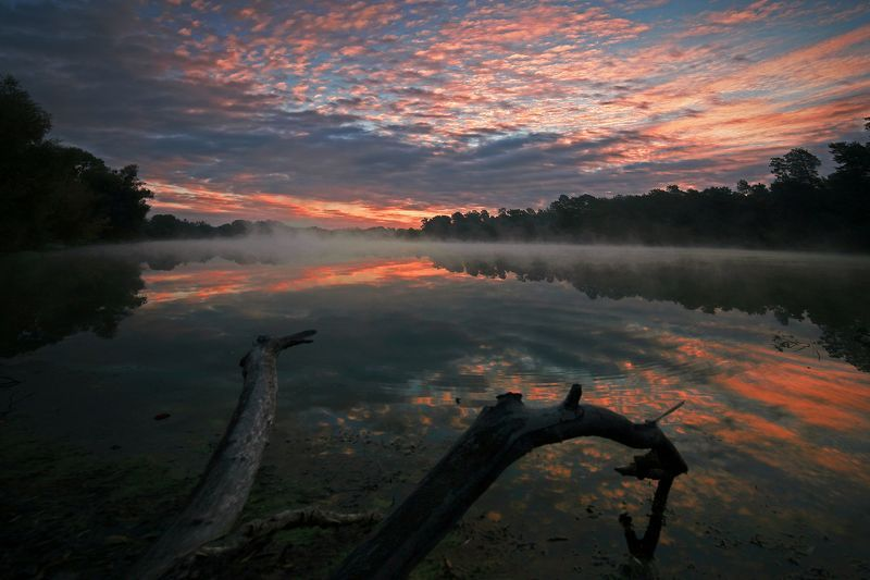 Чудища лесного озера или рассвет в багровых тонахphoto preview