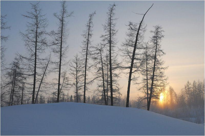 Таймыр,зима,солнце Долгожданное солнцеphoto preview