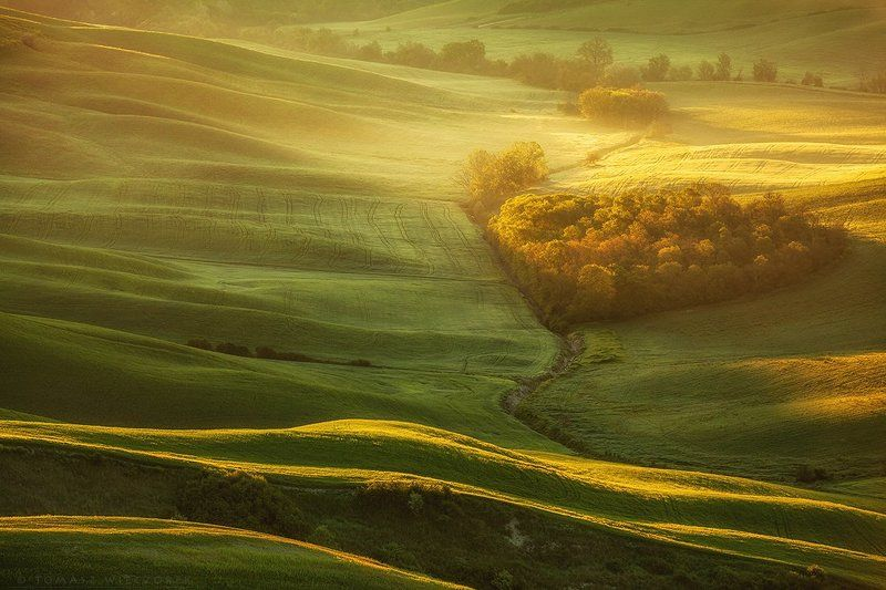 tuscany, italy, italia, light, fog, mist, spring, sunset, fields, heart, shadows, nature First light in Tuscanyphoto preview