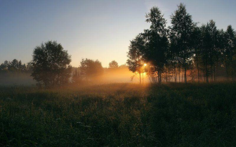 рассвет,утро Летнее утро...photo preview