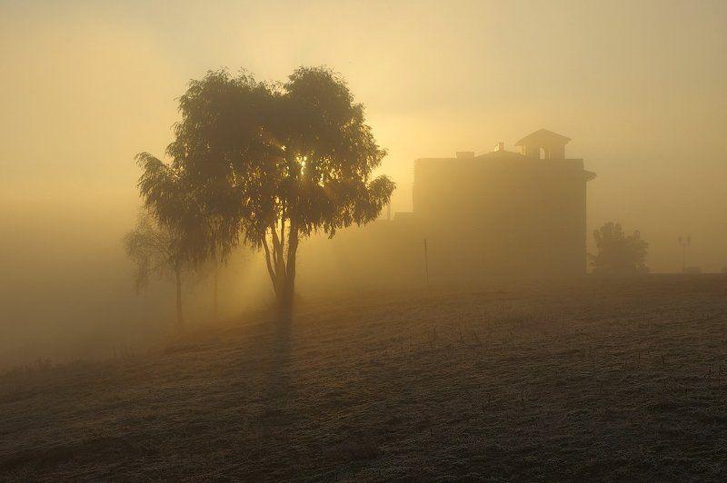 autumn, fog, morning, sunlight, morninglight, belarus, frozen, рассвет, осеннее утро, туман, солнечный свет, беларусь, пейзаж The House Of The Rising Sunphoto preview