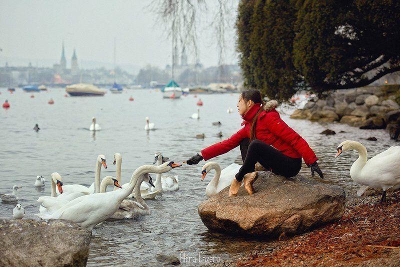 portrait, ballet, ballerina, dance, dancing, swan Swan Lakephoto preview