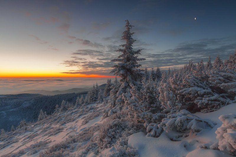 landscape,canon,winter,sunrise Colour Spectrumphoto preview