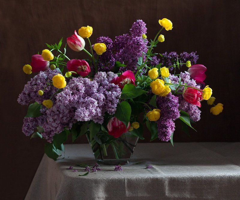 натюрморт, цветы, сирень, тюльпаны, букет, весна, still life, алина ланкина ***photo preview