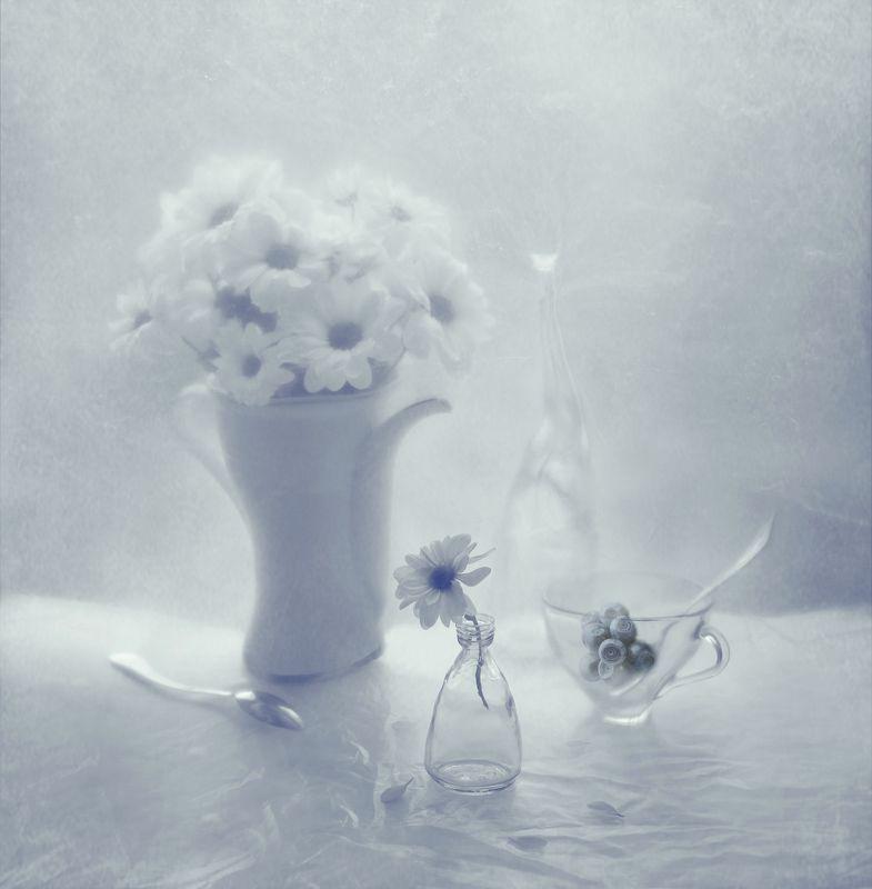 цветы, белый, природа, растение, чашка, черника, букет, ложка, чайник, бутылка, лепестки, натюрморт, арт photo preview