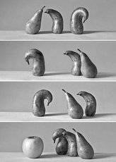 из жизни китайских груш