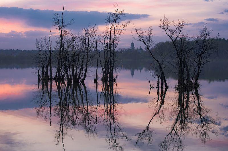 вечер, весна, озеро, деревья, затоплено Весенним вечеромphoto preview