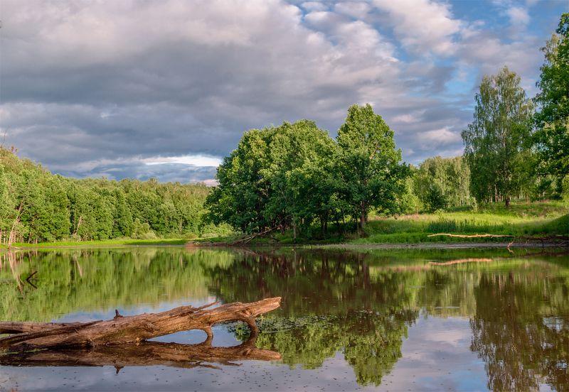 пейзаж.брянск, природа Лесное озероphoto preview