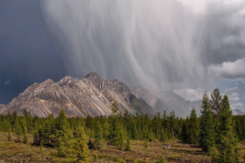 якутия, омулёвское среднегорье, берег озера дарпир Сразу после грозы.photo preview