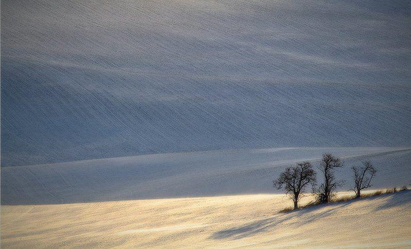 canon moravia Moravian fieldphoto preview