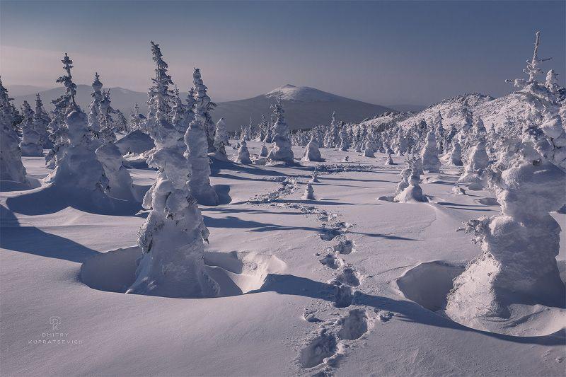 урал, таганай, природа, пейзаж, зима, снег, горы В снегахphoto preview