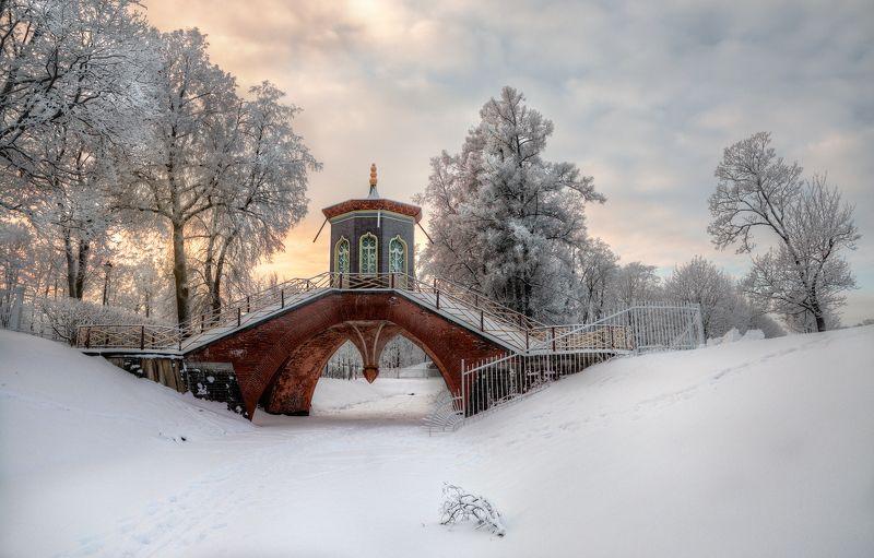 про пушкинские башниphoto preview