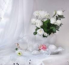 Розы белые — нежность души...