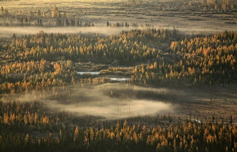 алтай, горный алтай, курайская степь, долина чуи, утро, туман, осень Плывут туманы над рекойphoto preview