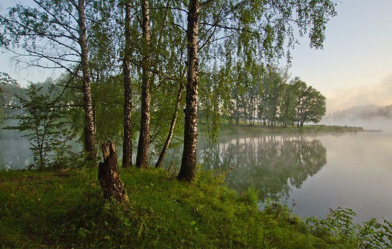 лето озеро природа пейзаж Лето на озереphoto preview