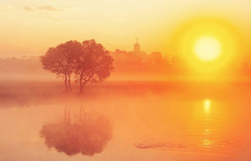 утро, рассвет, природа Рассвет в золотомphoto preview