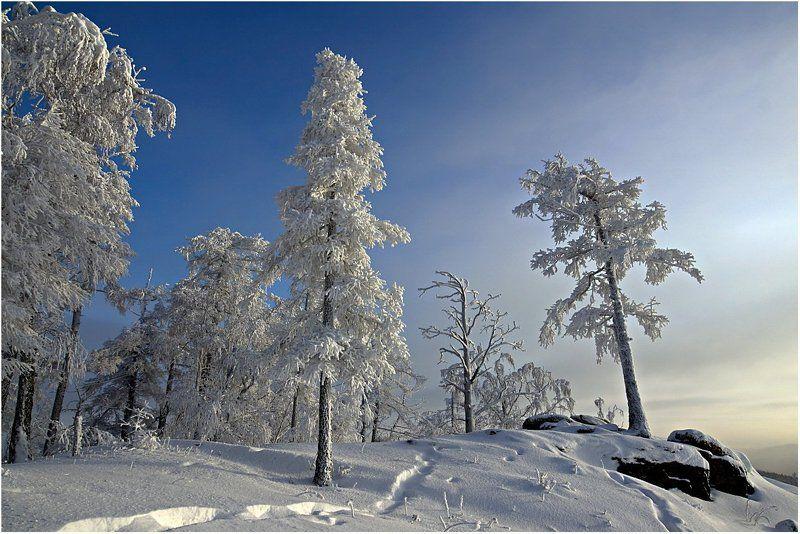 мороз,деревья,куржак. На каменном троне...photo preview