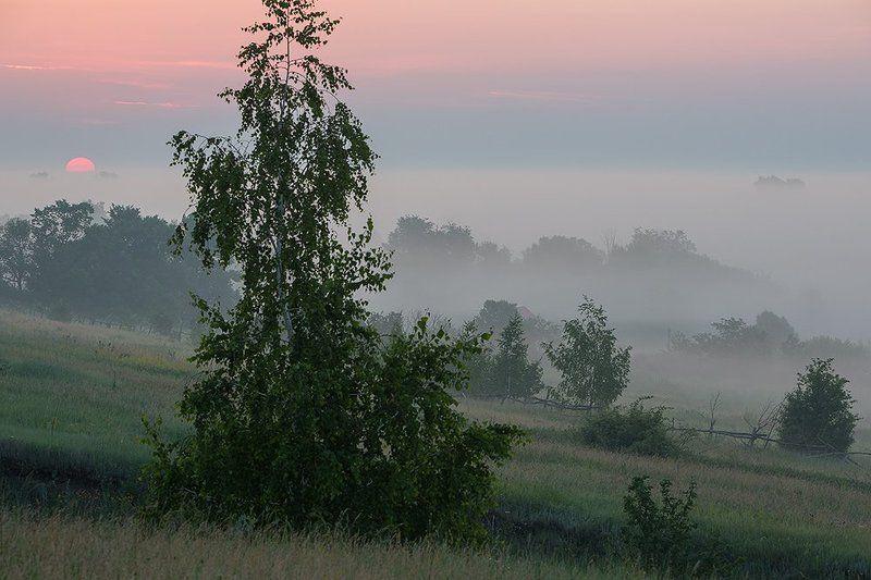 Туманное утро на околице.photo preview