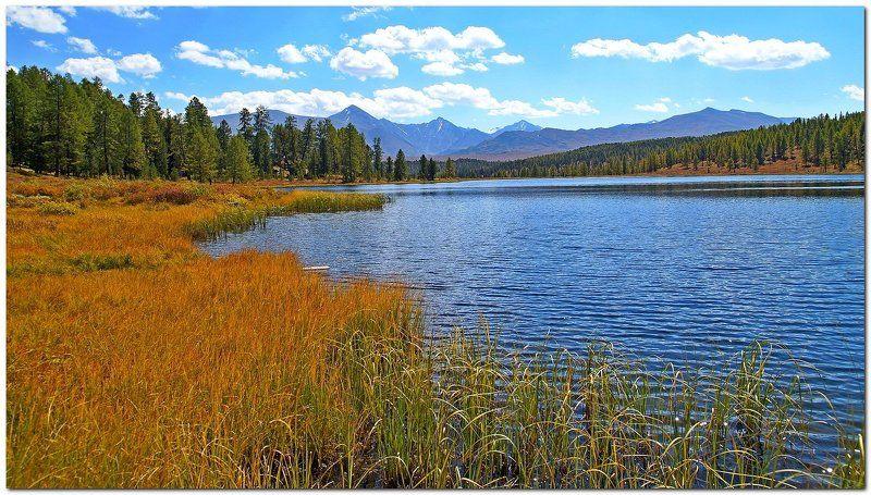 пейзаж, озеро, осень, Горный Алтай! У озера! photo preview