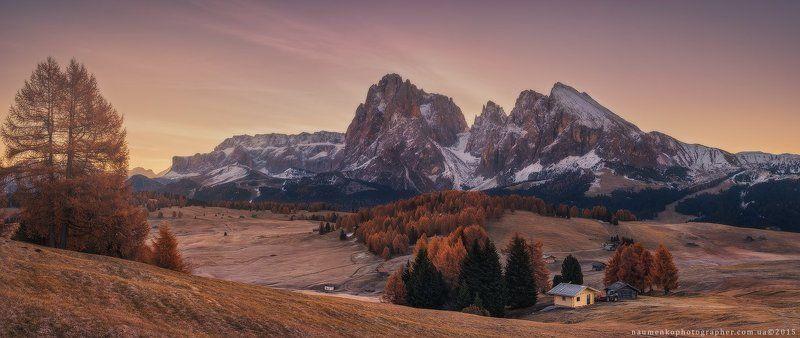 италия, доломиты, сьюзи, альпийский, пейзаж, альпы, осень, горы, домик, облака, доломитовые, осень, гардена, трава, зеленый, группа, туризм, хижина, луг, горы, природа, пастбища, путь, плато, скалы, живописные, небо, юг, восточный, солнце, солнечный, восх Италия. Доломиты. Осеннее утро на плато Alpe Di Siusiphoto preview