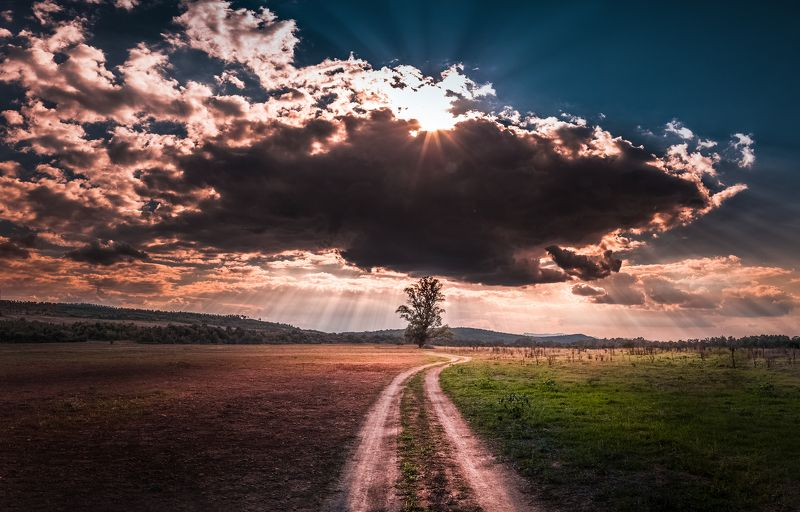 landscape, autumn, summer, road, field, clouds, sky, rays, sunrays, bulgaria, nature, tree Changing Seasonsphoto preview