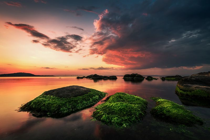 sunset, sea, rock, mood, landscape, seascape, green, seaweed Sunset on firephoto preview