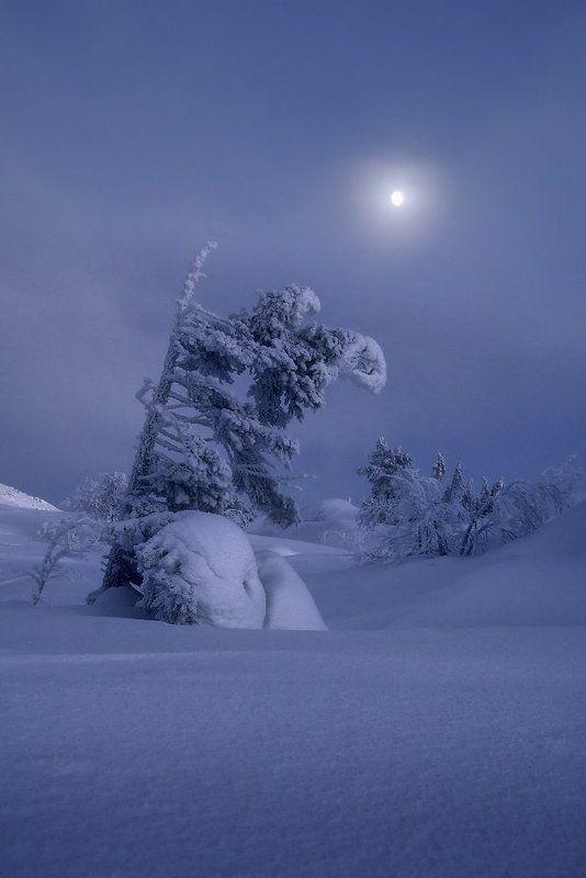 кольский полуостров, мурманская,кандалакша Вечер на гореphoto preview