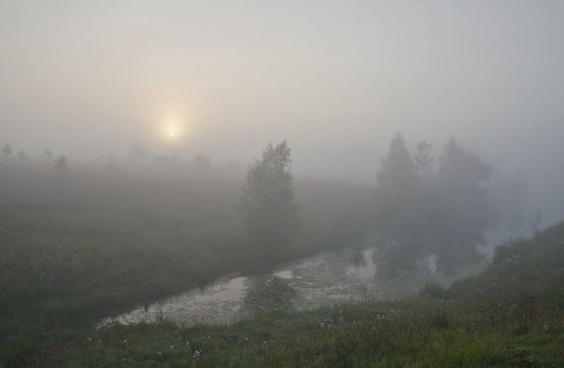 утро туман пруд пейзаж Сонные берегаphoto preview