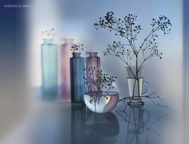 цветное стекло отражение гипсофила лоза И будет весна..) 4photo preview