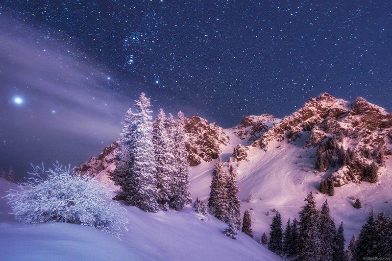 туюк-су, ночь, горы, ночное небо, орион Высоко в горах зимой дуют ветры и светят звёздыphoto preview