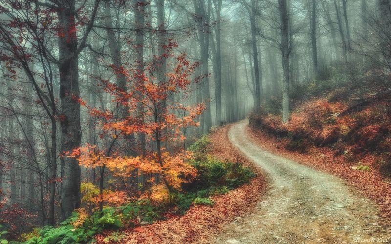 Осенними дорожками Кавказа...photo preview