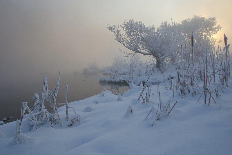 зима холод мороз снег иней озеро горячка Край суровый и прекрасныйphoto preview