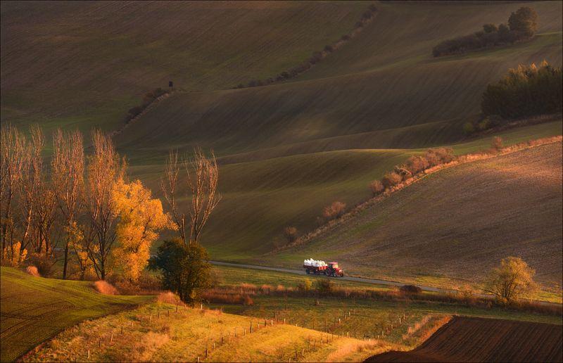 чехия, южная моравия, весна, south moravian, Битва за урожайphoto preview