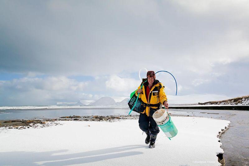 человек, собиратель, остров беринга Бичкомберphoto preview