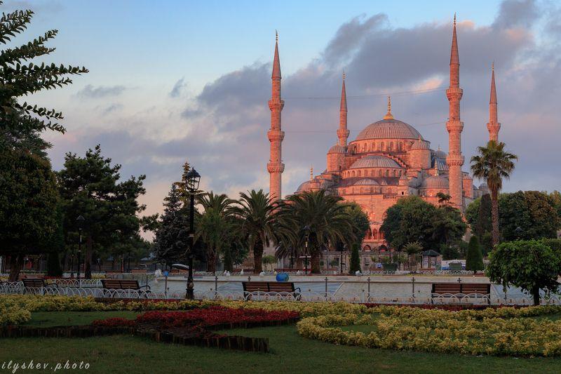 турция, стамбул, голубая мечеть, путешествия, утро, рассвет Голубая мечеть в красномphoto preview