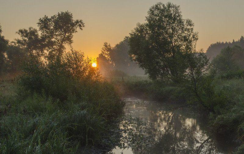 Летнее утро....photo preview