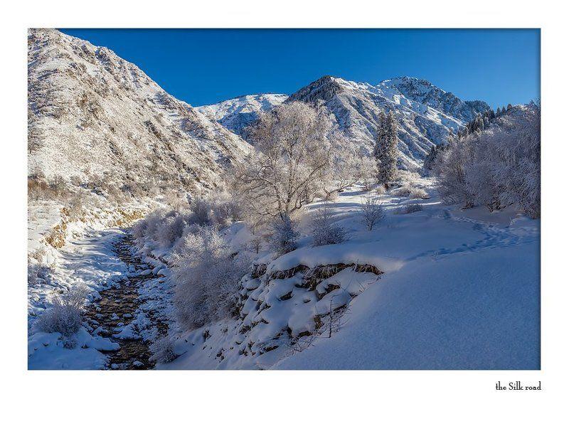 Тянь-Шань, Заилийский Алатау прогулка в Большой Алматинской щелиphoto preview